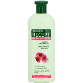 Subrina Professional Recept Intensive & Balancing šampon proti prhljaju za normalne in mastne lase Echinacea 400 ml