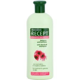 Subrina Professional Recept Intensive & Balancing champô anticaspa para cabelo normal a oleoso  Echinacea 400 ml