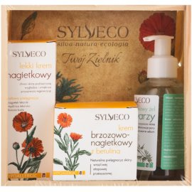 Sylveco Face Care set cosmetice II.