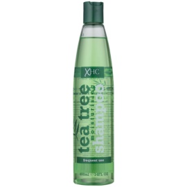 Tea Tree Hair Care champú hidratante para uso diario  400 ml