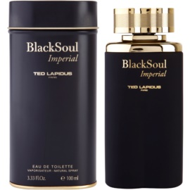 Ted Lapidus Black Soul Imperial тоалетна вода за мъже 100 мл.