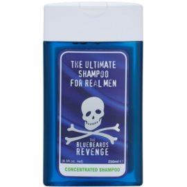 The Bluebeards Revenge Hair & Body champô para homens  250 ml