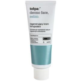 Tołpa Dermo Face Sebio regenerierende Nachtcreme für fettige Haut  40 ml