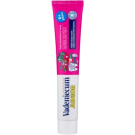 Vademecum Junior pasta de dentes para crianças com sabor de morango  75 ml