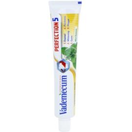 Vademecum Perfection 5 bělicí pasta pro kompletní ochranu zubů příchuť Mint Essence 75 ml