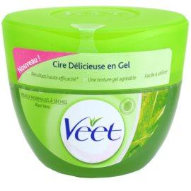 Veet Depilatory Gel depilačný gél pre suchú pokožku  250 ml
