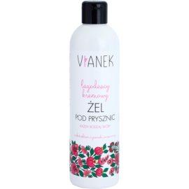 Vianek Calming cremiges Duschgel mit beruhigender Wirkung mit Extrakt aus Sonnenhüten  300 ml