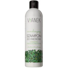 Vianek Energizing sanftes Shampoo für jeden Tag für normales bis fettiges Haar mit Brennnessellaubextrakt  300 ml