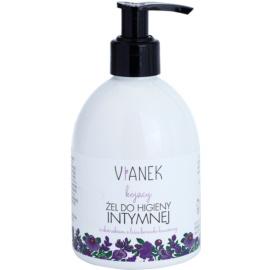 Vianek Soothing Gel für die intime Hygiene zur täglichen Anwendung mit Extrakt aus den Blättern von der Preiselbeere  300 ml
