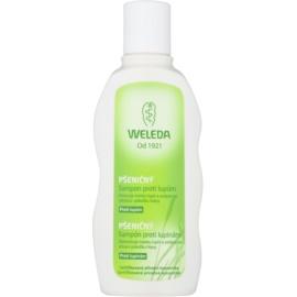 Weleda Hair Care champô de trigo anti-caspa  190 ml