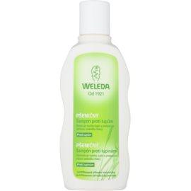 Weleda Hair Care pšenični šampon proti prhljaju  190 ml
