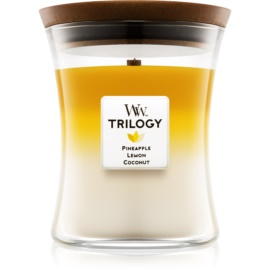 Woodwick Trilogy Fruits of Summer dišeča sveča  275 g srednja