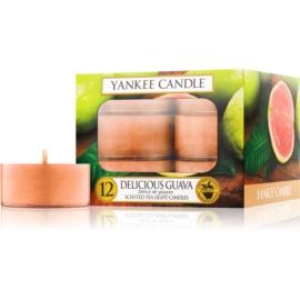 Yankee Candle Delicious Guava čajová svíčka