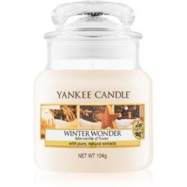 Yankee Candle Winter Wonder vonná svíčka 104 g Classic malá