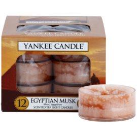 Yankee Candle Egyptian Musk čajová svíčka 12 x 9,8 g