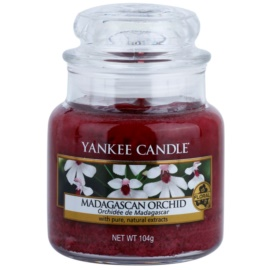 Yankee Candle Madagascan Orchid vela perfumado 104 g Classic pequeno