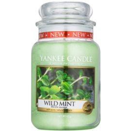 Yankee Candle Wild Mint świeczka zapachowa  623 g Classic duża