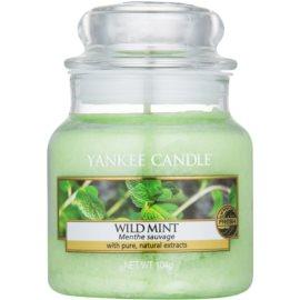 Yankee Candle Wild Mint świeczka zapachowa  104 g Classic mała