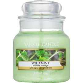 Yankee Candle Wild Mint bougie parfumée 104 g Classic petite
