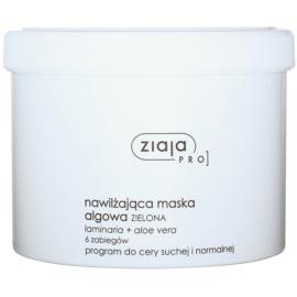 Ziaja Pro Alginate Masks Hydratisierende Maske nur für professionellen Gebrauch  155 g