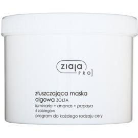 Ziaja Pro Alginate Masks exfoliační maska pro profesionální použití  155 g