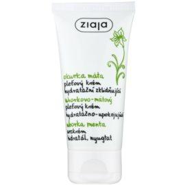 Ziaja Cucumber Hautcreme mit feuchtigkeitsspendender Wirkung  50 ml