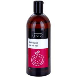 Ziaja Family Shampoo szampon do włosów normalnych  500 ml