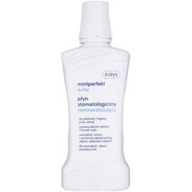 Ziaja Mintperfekt Activ remineralisierendes Mundwasser  500 ml