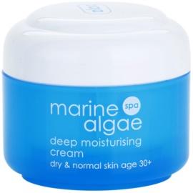 Ziaja Marine Algae stark feuchtigkeitsspendende Creme für normale und trockene Haut  50 ml