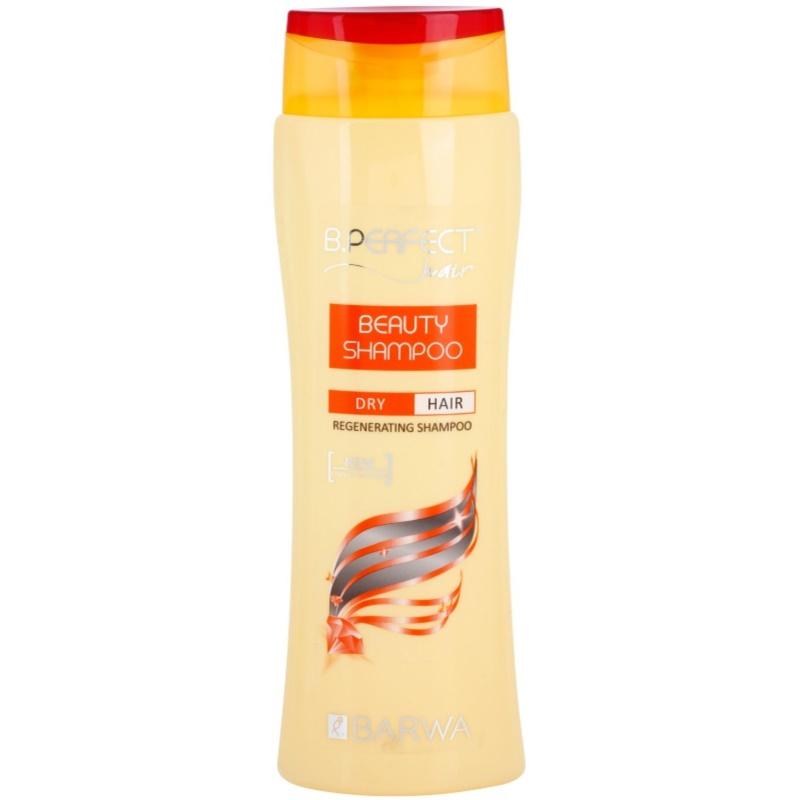 barwa b perfect hair beauty shampoo regenierendes shampoo f r trockenes haar. Black Bedroom Furniture Sets. Home Design Ideas