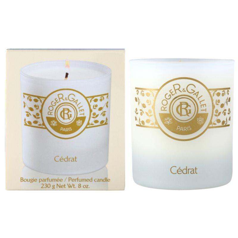 roger gallet bougie parfum e scented candle 230 g. Black Bedroom Furniture Sets. Home Design Ideas