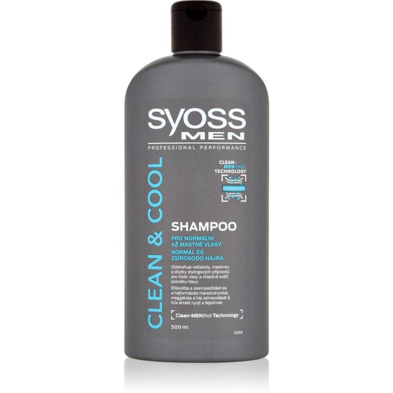 syoss men clean cool shampoo f r normales bis fettiges haar. Black Bedroom Furniture Sets. Home Design Ideas