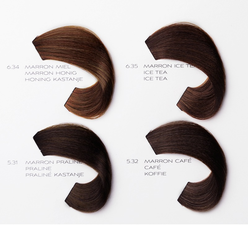 Loreal Professional Hair Color Chart Richesse Famous Hair Dye 2018