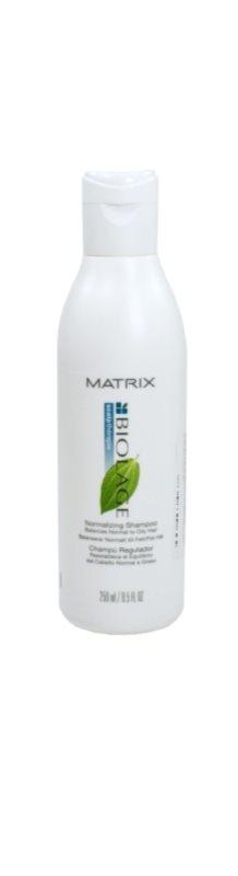 matrix biolage scalpth rapie shampoo f r schnell fettiges haar. Black Bedroom Furniture Sets. Home Design Ideas